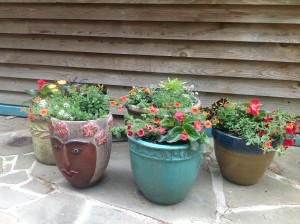 pretty patio pots different angle